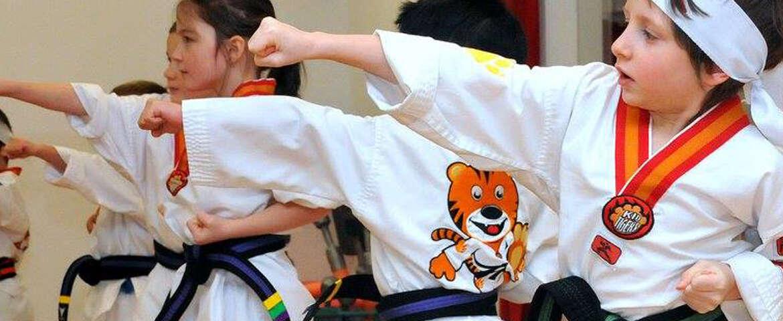 Karaté Tigres 5-6 ans
